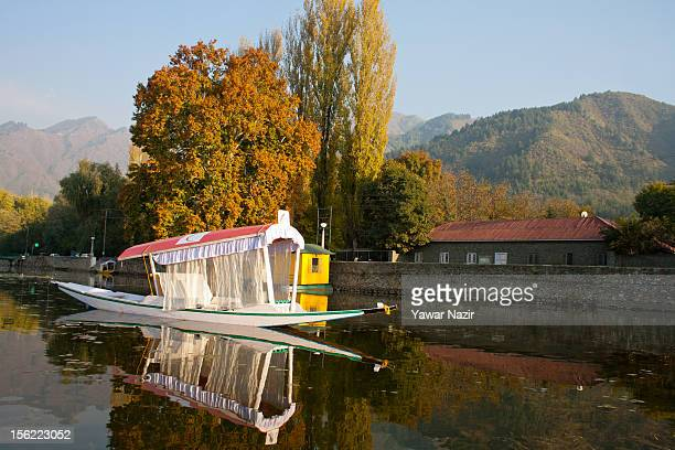 Autumunal colours during the autumn season on November 12 2011 in Srinagar the summer capital of Indian administered Kashmir India Trees are changing...