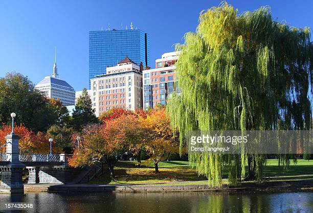 autunm in boston - boston common stock pictures, royalty-free photos & images
