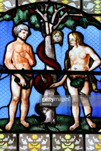 Auxerre cathedral dedicated to Saint Stephan Stained glass window Adam Eve and Lilith Garden of Eden France