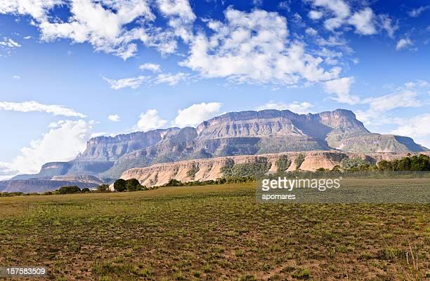 mesa auyantepuy las montañas-gran sabana venezuela - la gran sabana fotografías e imágenes de stock
