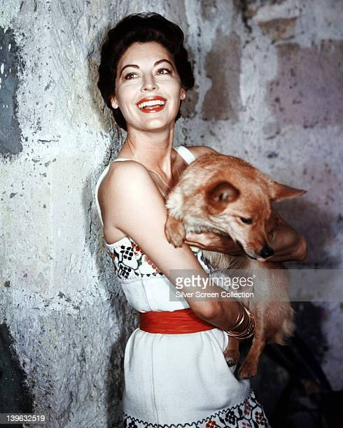 Ava Gardner US actress wearing a white dress with floral motifs and a red belt smiling as she holds a dog in her arms in a studio portrait circa 1955