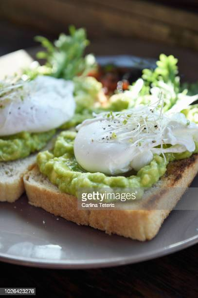 avacado toast with poached egg - avocado toast stockfoto's en -beelden