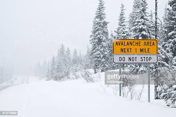 Avalanche Area