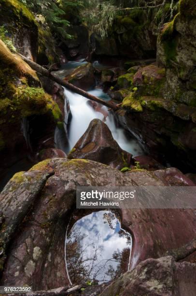 avalanche creek - brook mitchell stockfoto's en -beelden