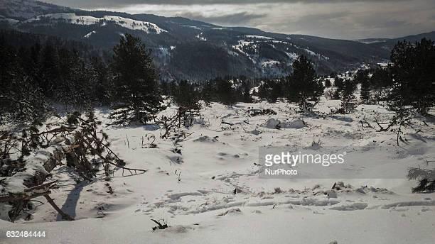 Avalanche in Fonte Cerreto, near L'Aquila, Italy on January 20, 2017. The snowfall has created unprecedented hardships over the past twenty years....