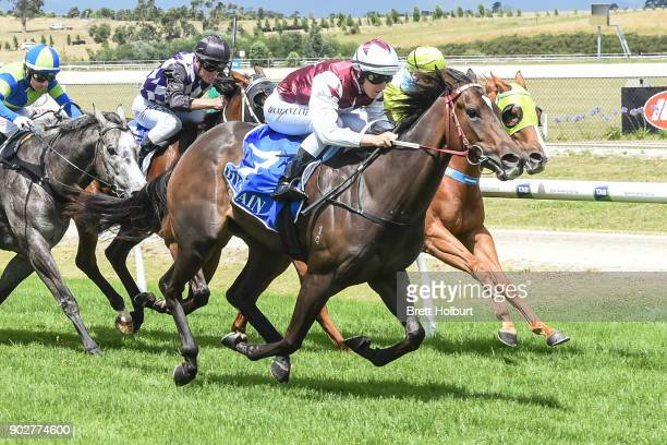 Avanti Rose ridden by Damian Lane wins the Hargreaves Hill Brewery Class 1 Handicap at Yarra Valley Racecourse on January 09 2018 in Yarra Glen...