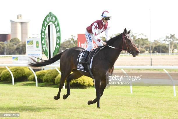 Avanti Rose ridden by Liam Riordan goes out for Save The Date March 31 2018 Maiden Plate at Warracknabeal Racecourse on May 27 2017 in Warracknabeal...