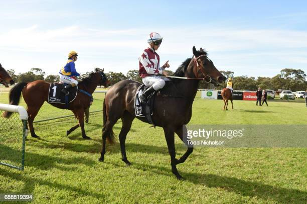 Avanti Rose ridden by Liam Riordan returns after Save The Date March 31 2018 Maiden Plate at Warracknabeal Racecourse on May 27 2017 in Warracknabeal...