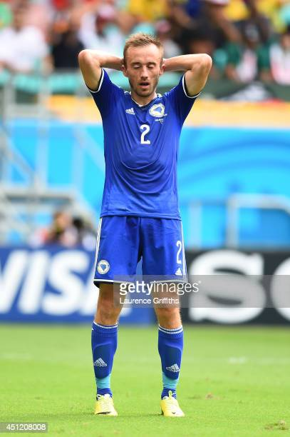 Avdija Vrsajevic of Bosnia and Herzegovina reacts during the 2014 FIFA World Cup Brazil Group F match between Bosnia and Herzegovina and Iran at...