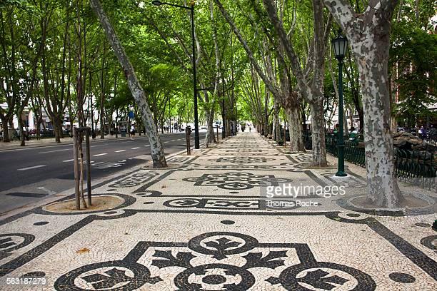 avenida da liberdade in lisbon - avenida - fotografias e filmes do acervo