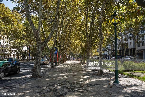 la avenida da liberdade, lisboa, portugal - lisboa fotografías e imágenes de stock