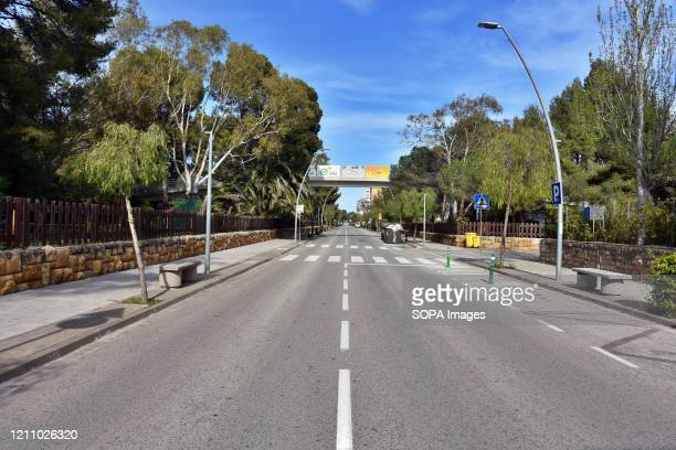 Avenida Paufuriana deserted during confinement 43 days since the government of Spain decreed the state of alarm and confinement due to the health...
