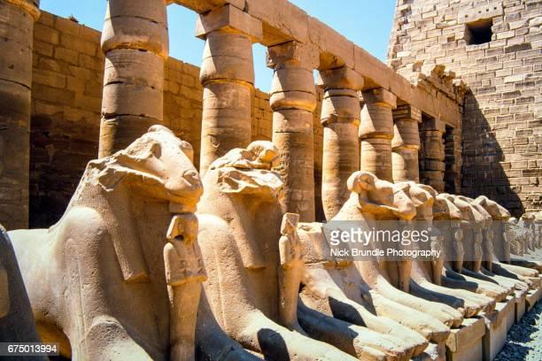 Avenue of Rams leading to temple precinct, Karnak, near Luxor