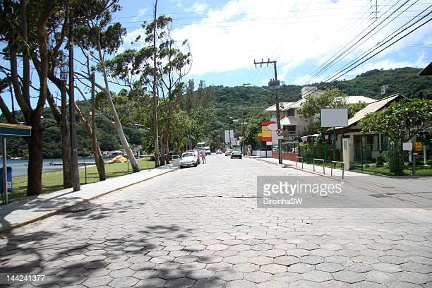 Avenue of Rendeiras