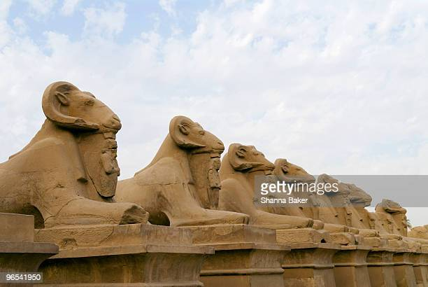 Avenue of sphinxes, Luxor Temple