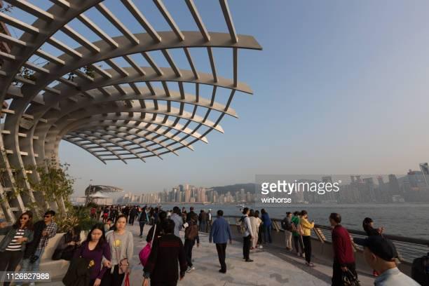 avenue of stars, hong kong - tsim sha tsui stock pictures, royalty-free photos & images