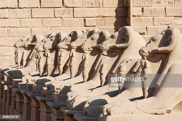 Avenue Of The Criosphinxes At The Entrance Of The Great Temple Of Amun In The Karnak Temple Complex, Luxor, Qina, Egypt