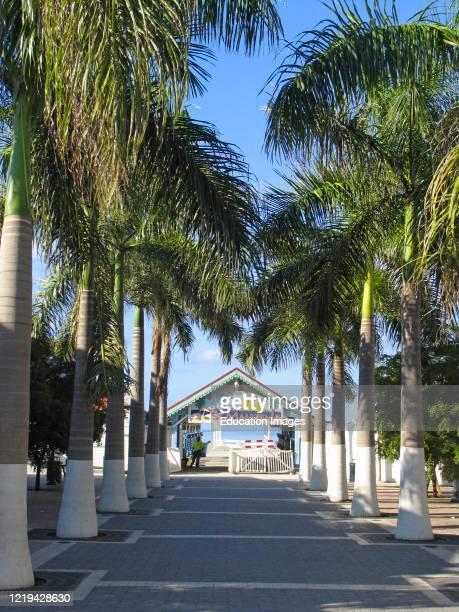 Avenue to water taxi jetty where cruise ship passengers arrive Philipsburg Dutch Sint Maarten.