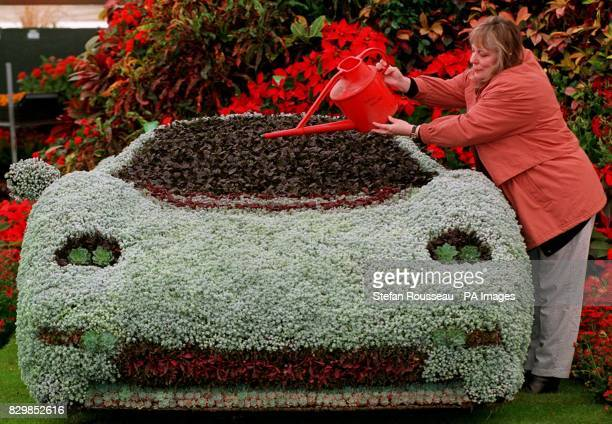 Averill Cooke waters a flower model of the Jaguar XJ220 ahead of tomorrow's Chelsea Flower Show in London The model was created using a steel frame...