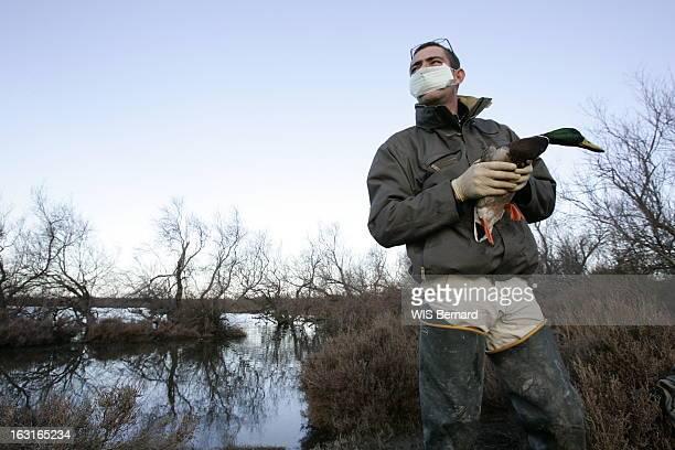 State Of Alert In France Yves KAYSER ornithologue à la station biologique de La Tour du Valat en CAMARGUE portant un masque et des gants de...
