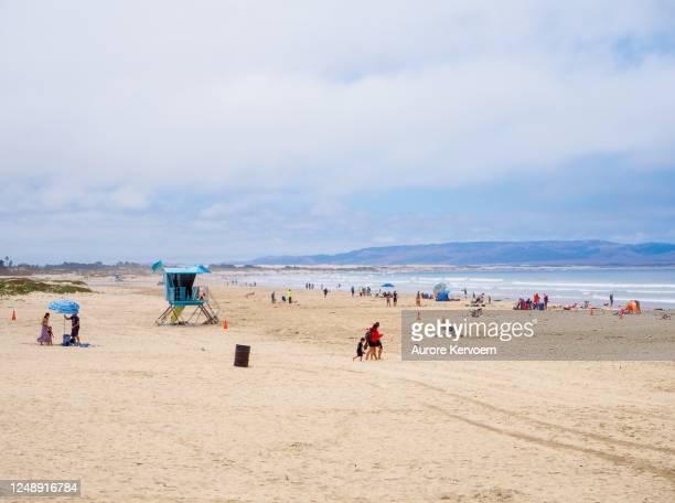 アビラビーチ、ピズモビーチ近く、カリフォルニア州 - ピスモビーチ ストックフォトと画像