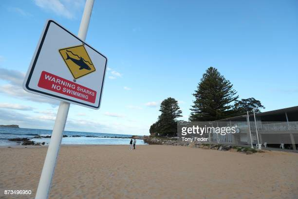 Avoca Beach is closed after a surfer was attacked by a shark on November 13, 2017 in Gosford, Australia.