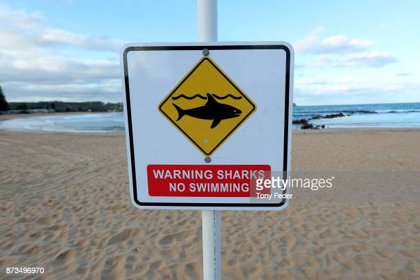 Avoca Beach is closed after a surfer was attacked by a shark on November 13 2017 in Gosford Australia