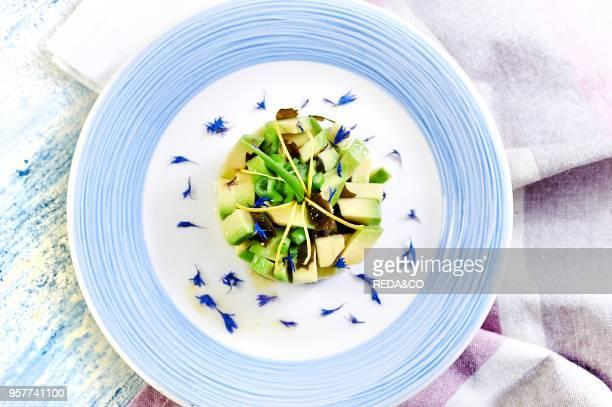 Avocado Tartare with Kombu Algae