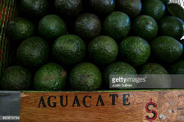 Avocados are displayed in a store at Mercado Hidalgo on January 27 2017 in Tijuana Mexico US President Donald Trump announced a proposal to impose a...
