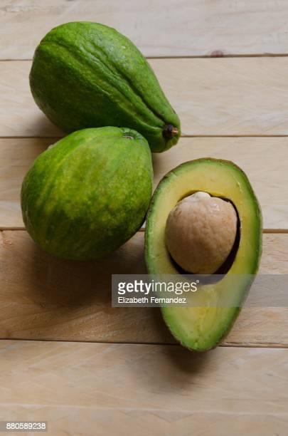 Avocados (persea americana)
