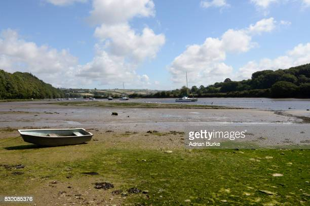 Avon River Devon.