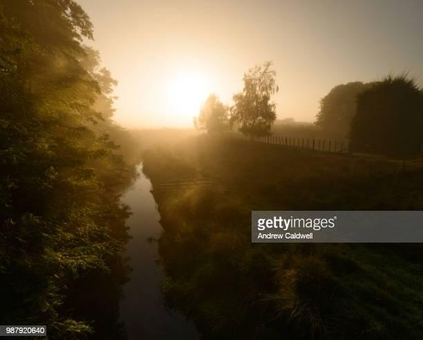 Awanui by mist light