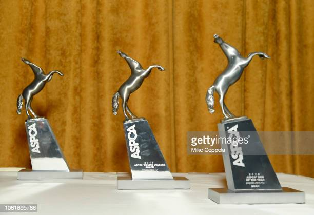 Awards on display at the ASPCA Hosts 2018 Humane Awards Luncheon at Cipriani 42nd Street on November 15 2018 in New York City