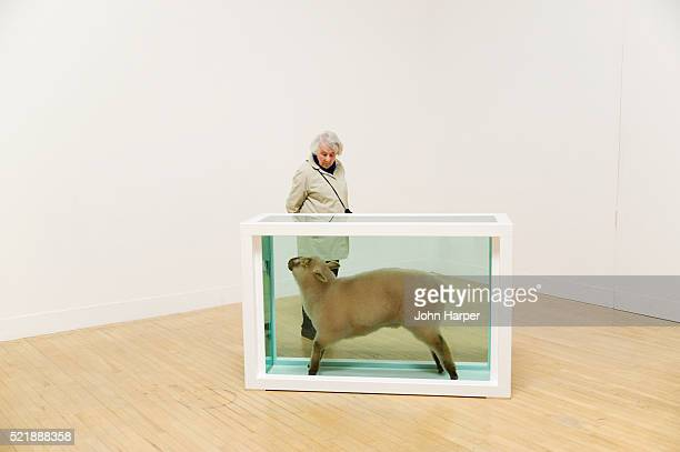 'Away from the Flock 1994' by Damien Hirst, Tate Britain, London