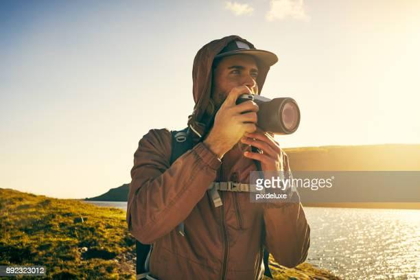 imponerande skönhet är allt omkring oss - vildmark bildbanksfoton och bilder