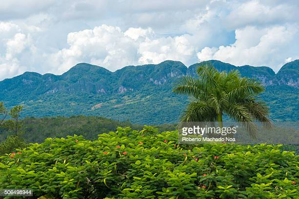 Awesome green and blue nature great for ecotouism The Vinales Valley is a Unesco World Heritage Site and a major tourist landmark featuring beautiful...