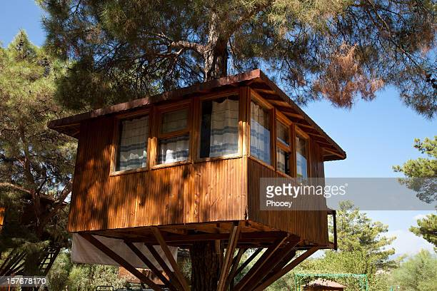Awesome tree house up high in single tree