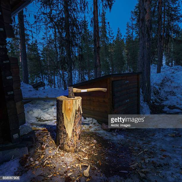 Axe in a tree stump, Swedish Lapland