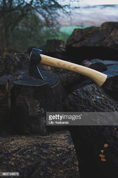 Axe on log in forest