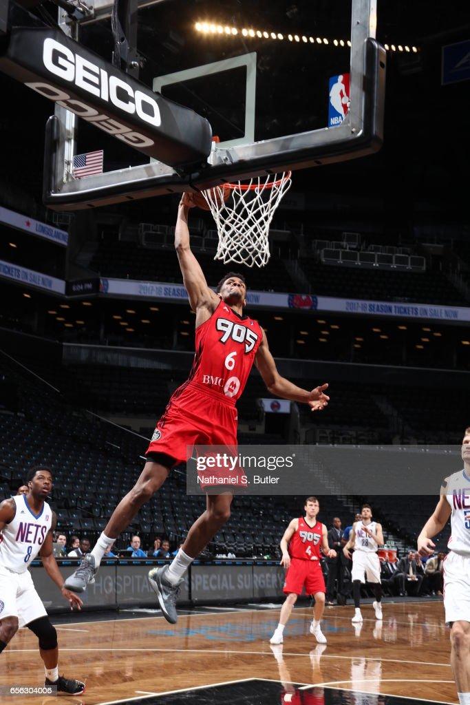 d2cb9754b48 Axel Toupane of the Raptors 905 dunks against the Long Island Nets ...