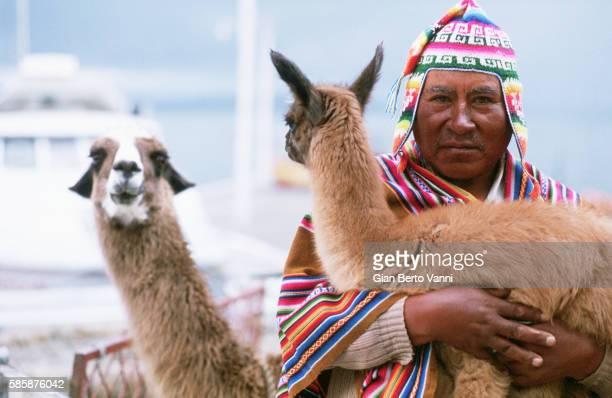 Aymara Man With Llamas