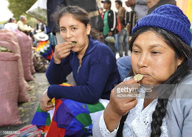 Aymara women chew coca leaves during a communal cocachewing day to support the Bolivian government petition to the United Nations Economic and Social...