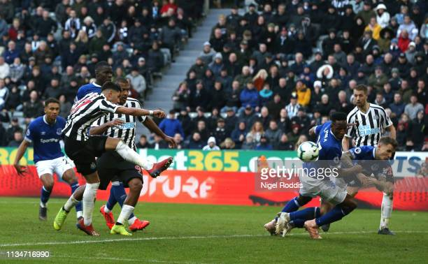 Ayoze Perez of Newcastle United scores his team's third goal during the Premier League match between Newcastle United and Everton FC at St. James...
