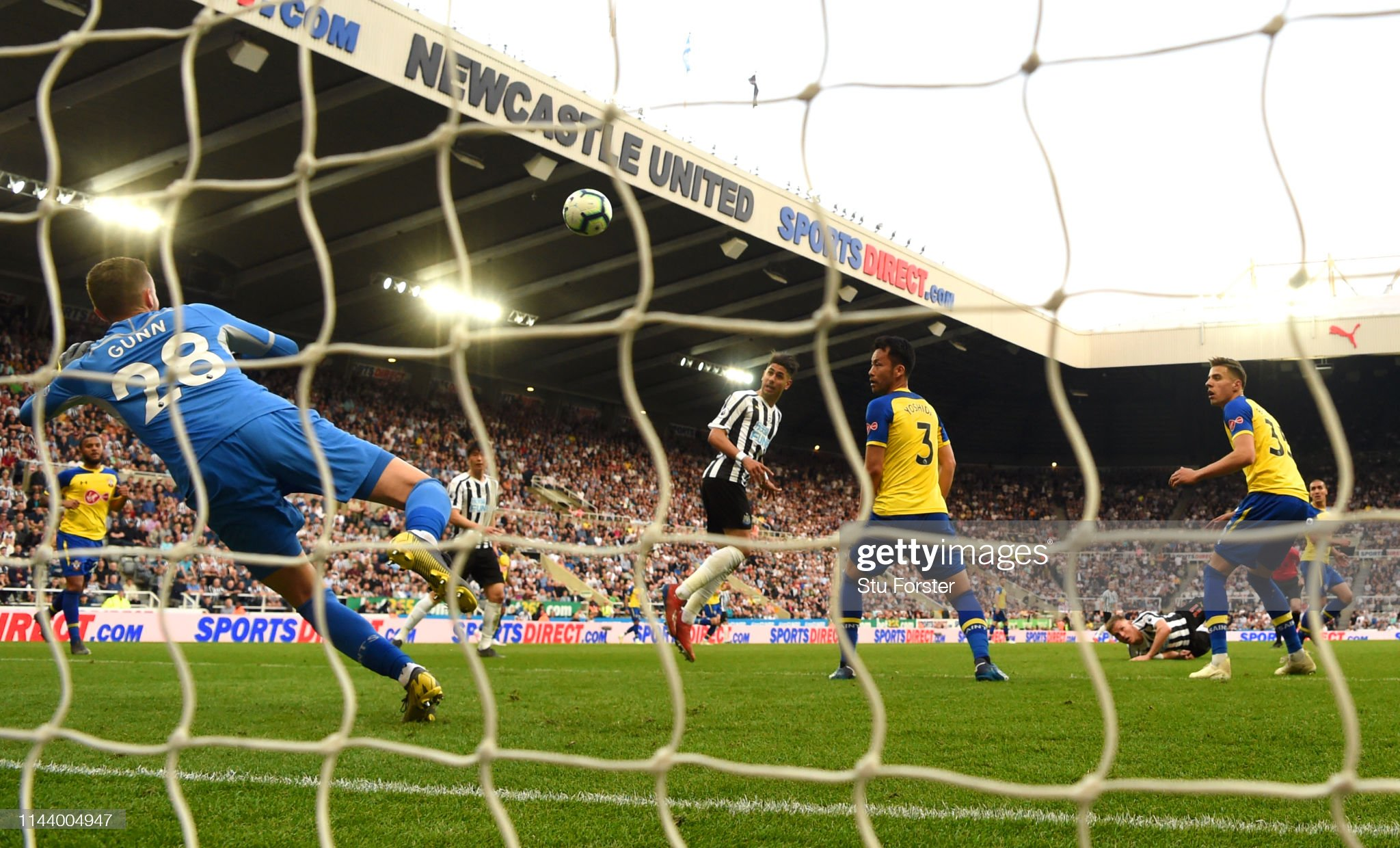 Newcastle United v Southampton FC - Premier League : News Photo