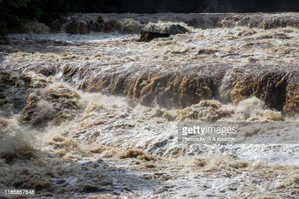 aysgarth falls in full spate, north yorkshire, england - river stock pictures, royalty-free photos & images