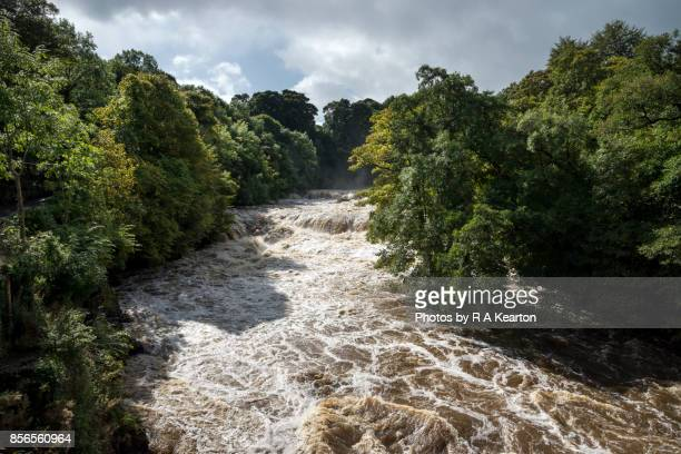 Aysgarth falls in full spate, Wenselydale, North Yorkshire