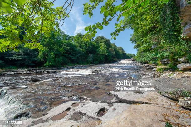 aysgarth falls, yorkshire dales national park, uk - riverbank stock pictures, royalty-free photos & images