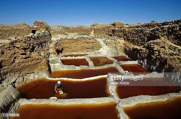 Azalai the caravan of the salt of Tenere Niger in December 1999 Saltworks in Bilma