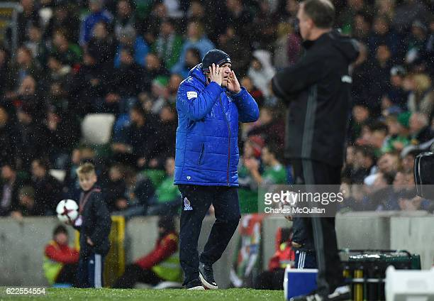 Azerbaijan manager Robert Prosinecki during the FIFA 2018 World Cup Qualifier between Northern Ireland and Azerbaijan at Windsor Park on November 11,...