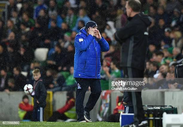 Azerbaijan manager Robert Prosinecki during the FIFA 2018 World Cup Qualifier between Northern Ireland and Azerbaijan at Windsor Park on November 11,...